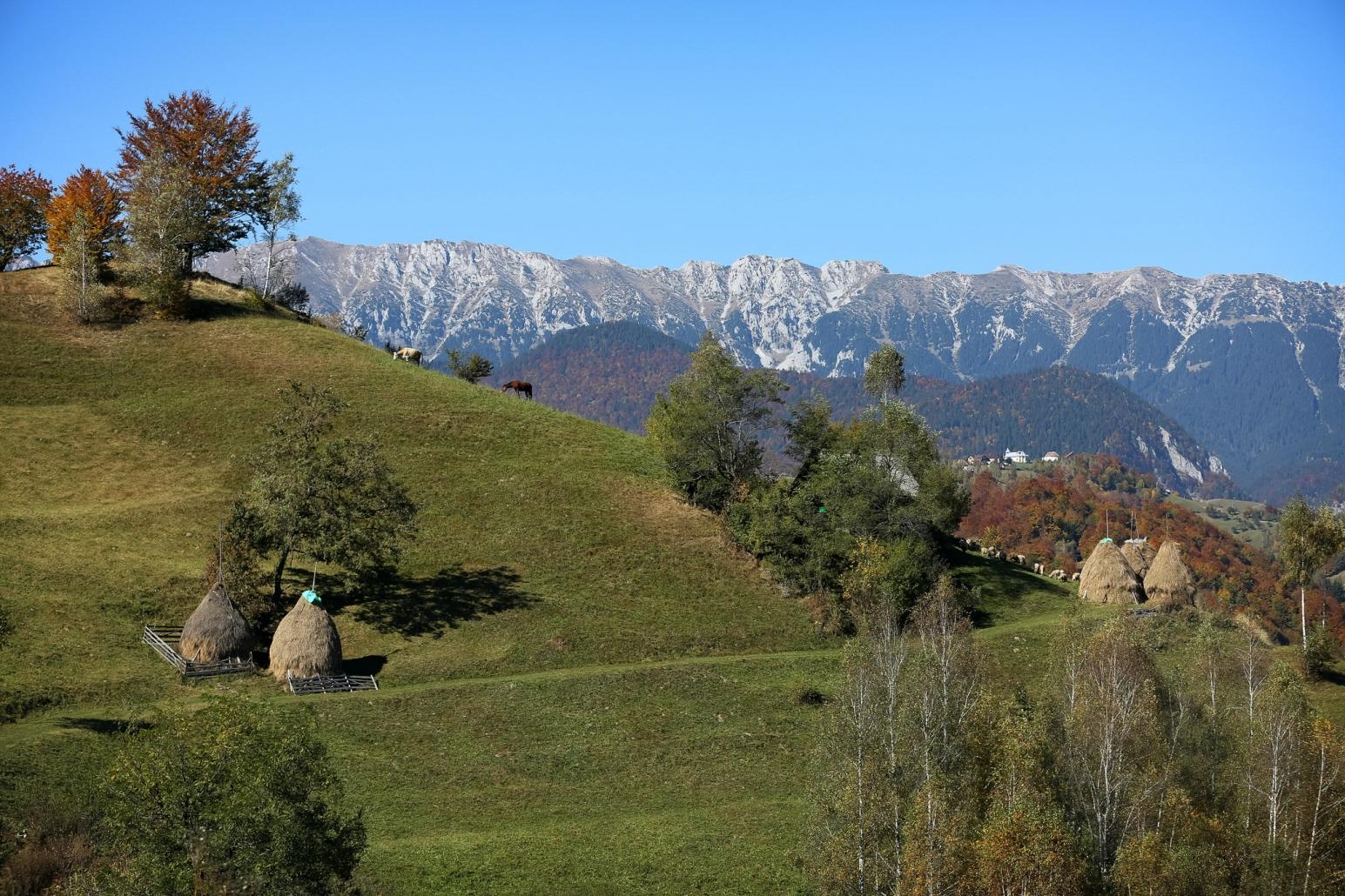Sat tradițional de munte din România