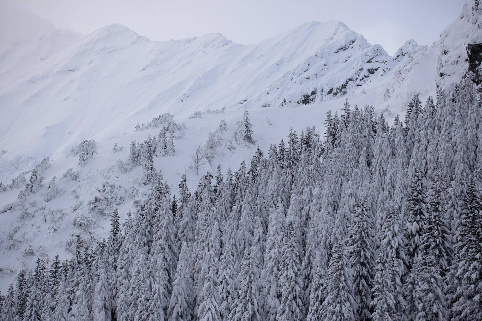Făgăraș, iarna, Podragu