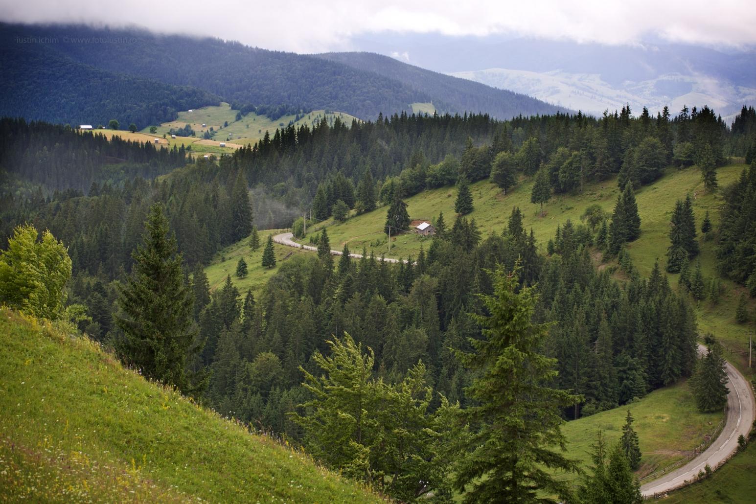 Peisaj din România, Bucovina
