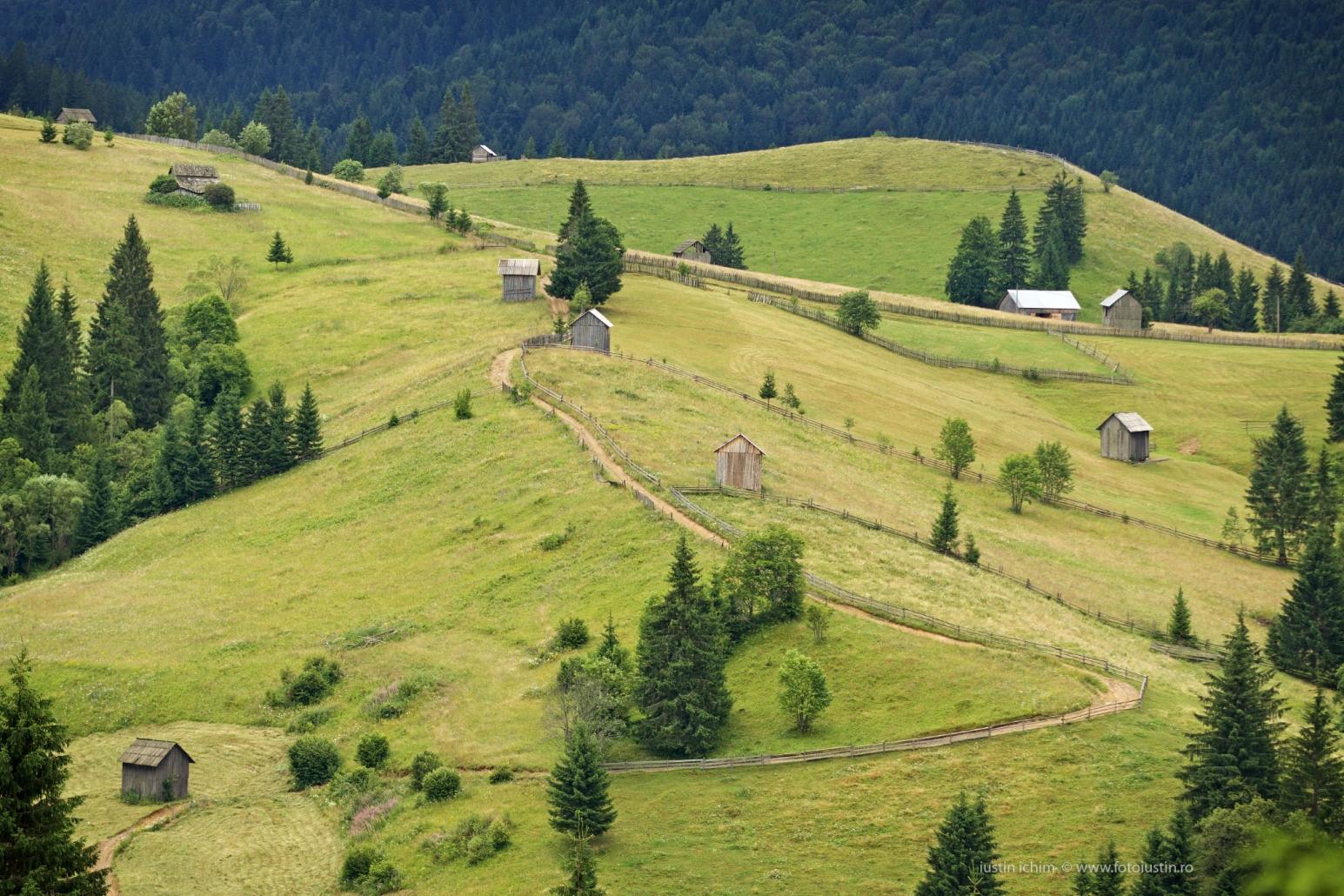 Peisaj pitoresc din România, Bucovina