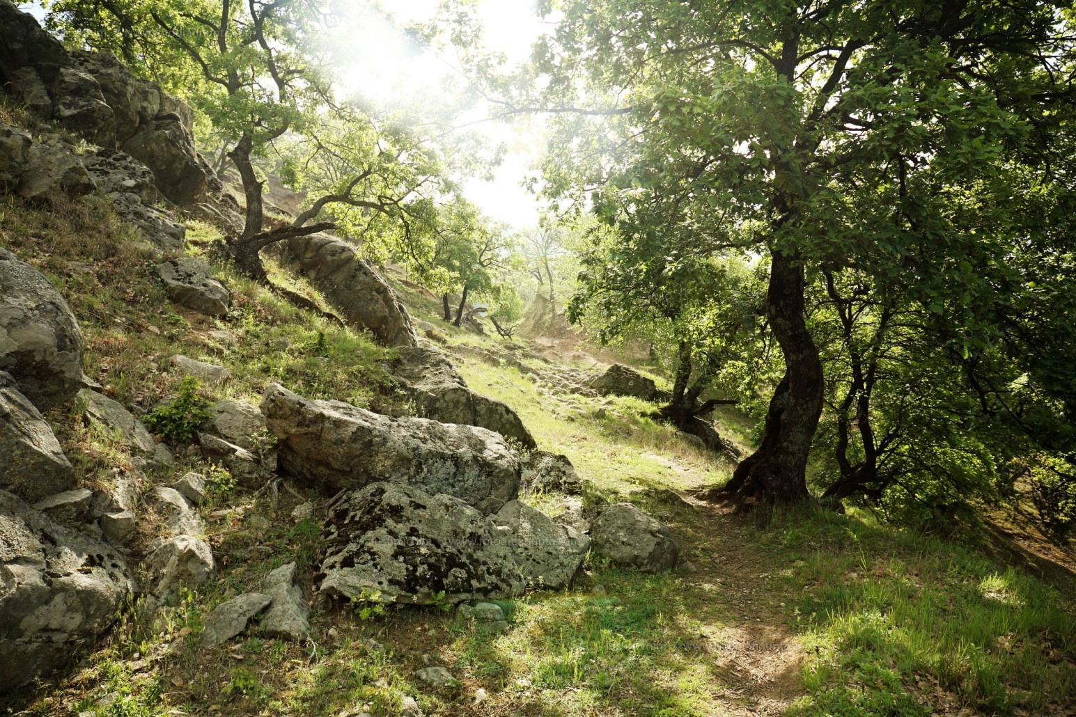 Peisaj in Muntii Măcin