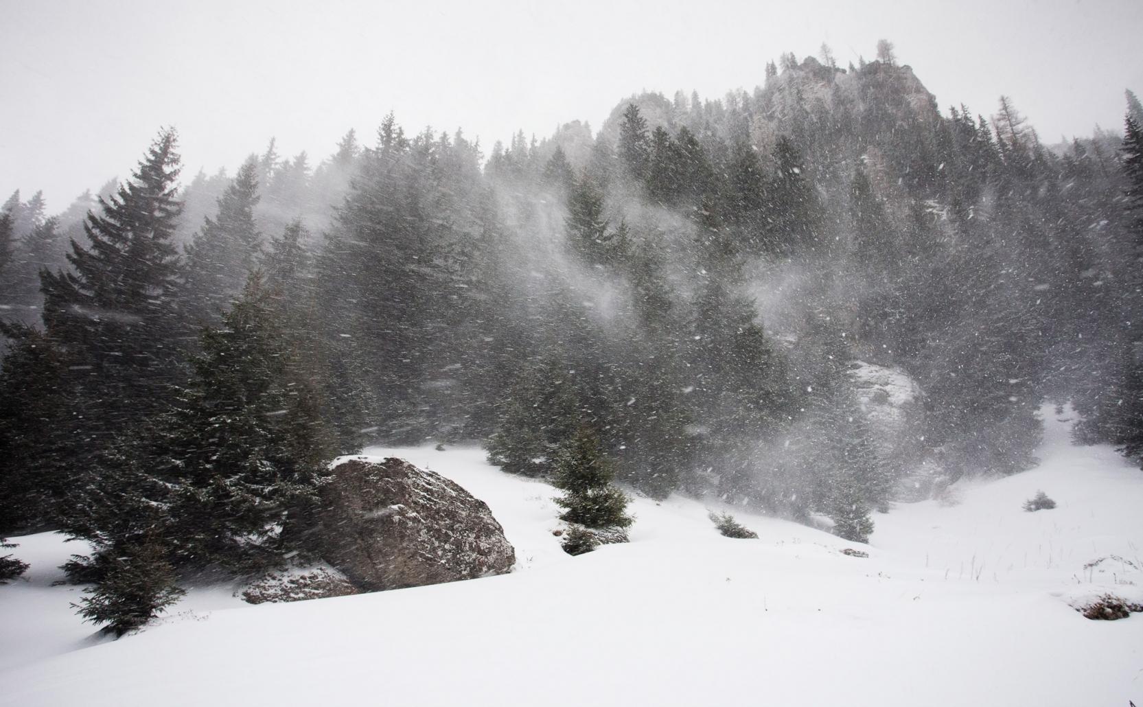 Viscol la munte