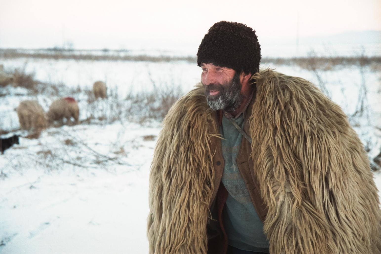 Cioban, iarna